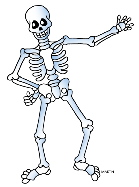 Free halloween skeleton clipart image