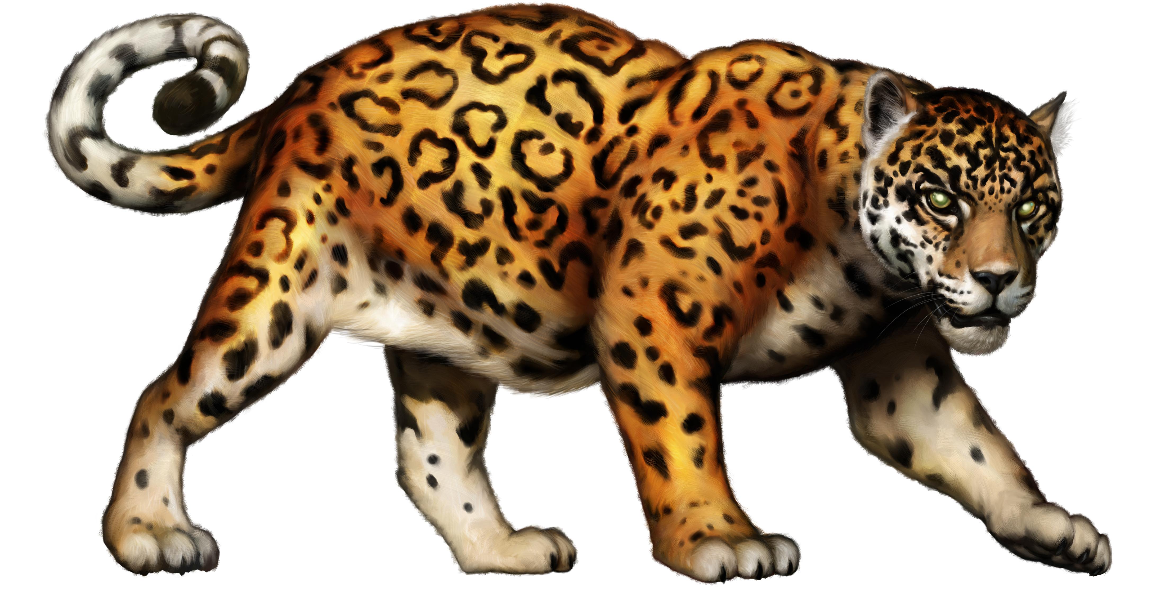 Free jaguar clip art big cat clipart image