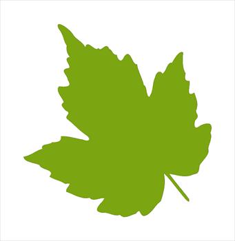 Free Leaf Clipart. feuille04sylvainnaudi01. feuille04sylvainnaudi01