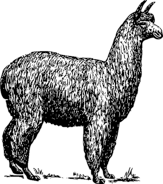 Free Llama Clipart 1 Page Of Public Domain Clip Art