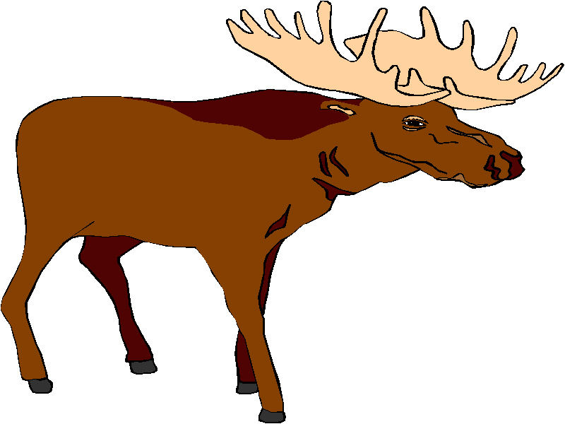 Free moose clipart free clipart graphics images and photos 2 image
