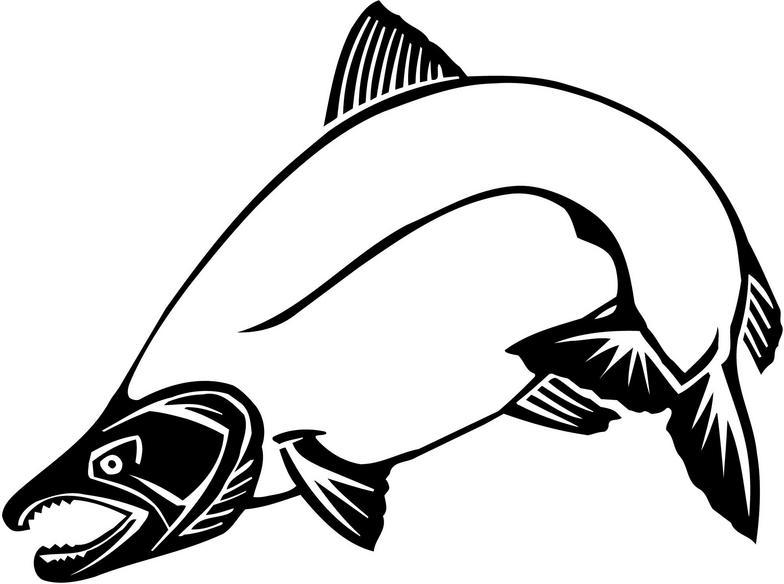 Free Salmon Clip Art - ClipArt Best