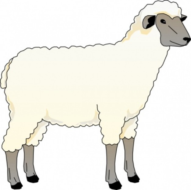 Free sheep clip art pictures