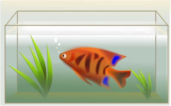 ... free vector Fish Tank clip art