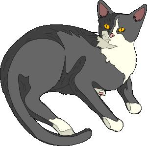 ... free vector Gatto Cat clip art ...