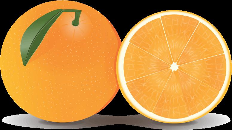 Free Whole u0026amp; Half Orange Clip Art