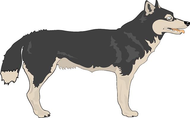 Free Wolf Clip Art