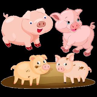 Funny Pink Pigs - Farm Animal .