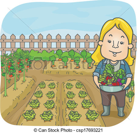Vegetable Garden - csp17693221