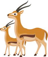 gazelle clipart. Size: 101 Kb