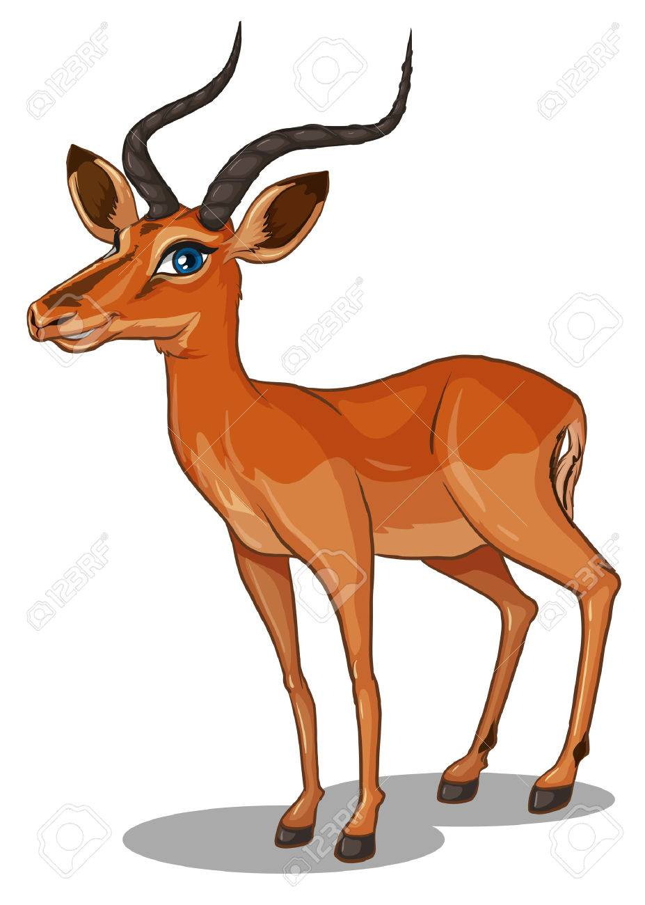 Illustration of a close up gazelle Stock Vector - 34641400