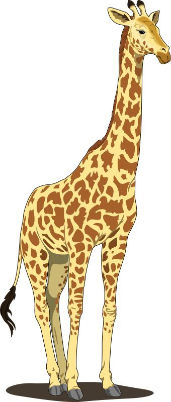 Giraffe Clip Art   Giraffe Clip Art Royalty FREE Animal Images   Animal Clipart Org   Wimsey   Pinterest   Search, Animals images and Cute giraffe