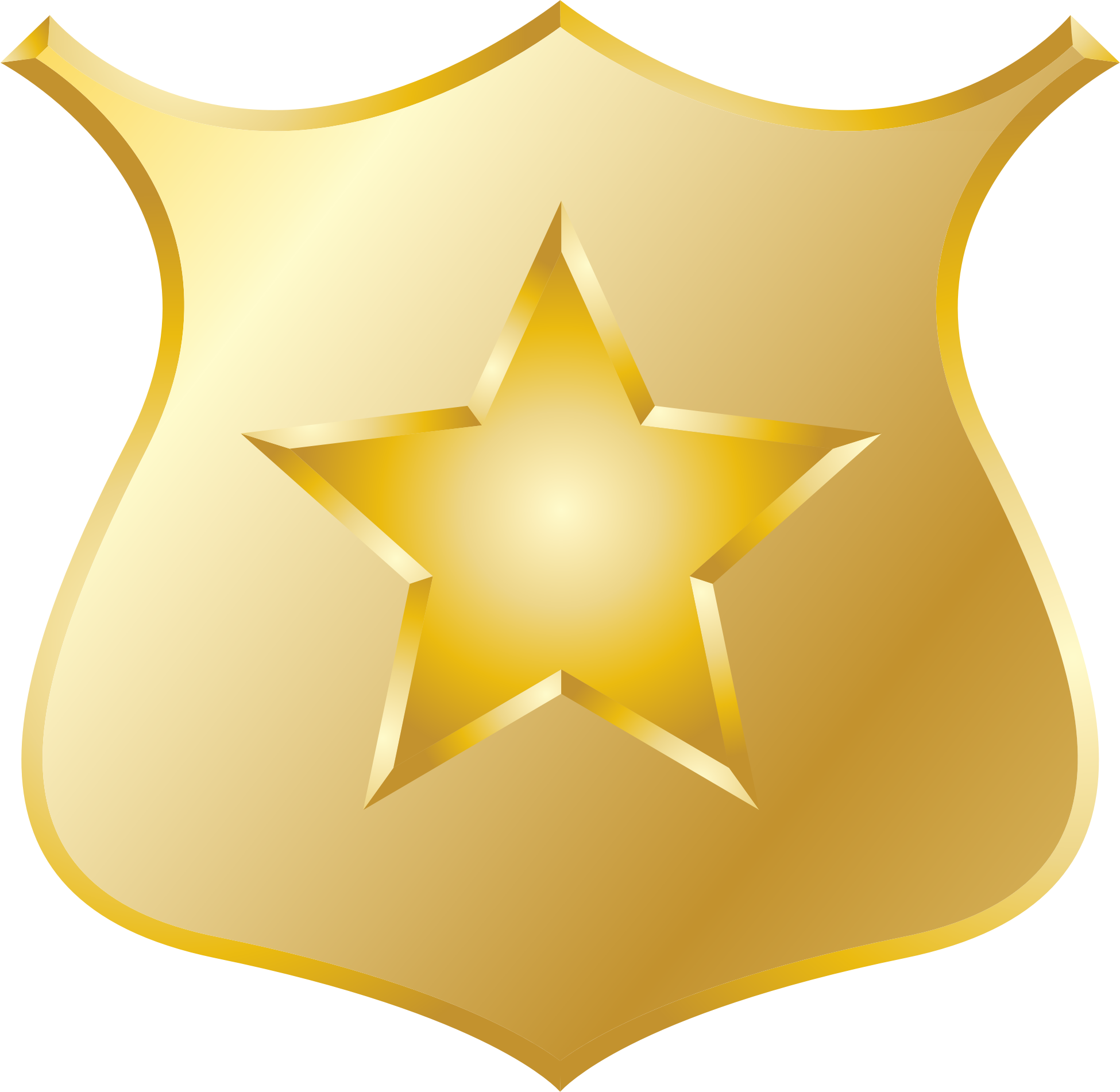 Gold police badge icon ?