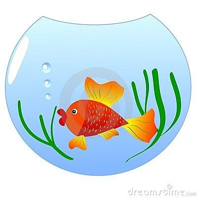 Goldfish Fish Bowl Clip Art Stock Illustrations u2013 68 Goldfish Fish Bowl Clip Art Stock Illustrations, Vectors u0026amp; Clipart - Dreamstime