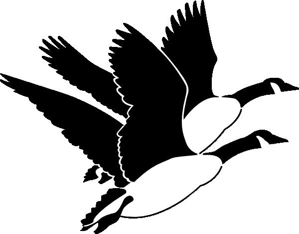 Goose Clip Art
