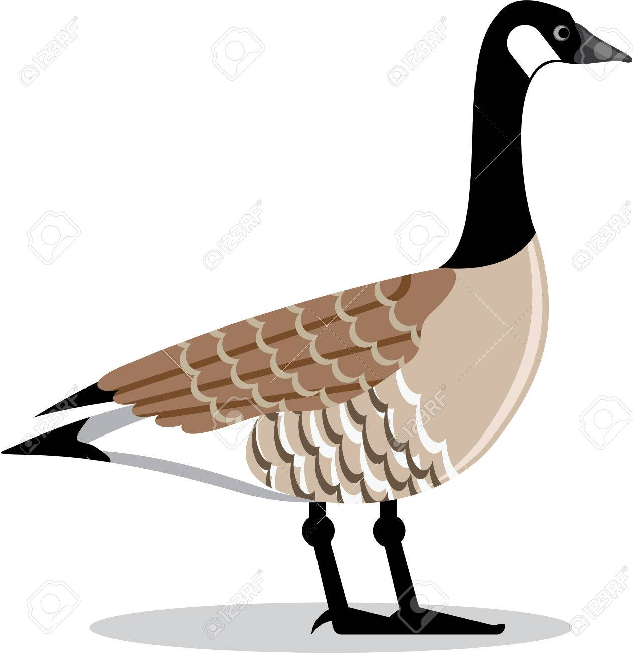 Brown Goose Vector Stylized Illustration Clip-art Image Stock Vector -  67756860