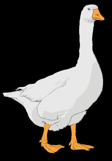 Goose cliparts