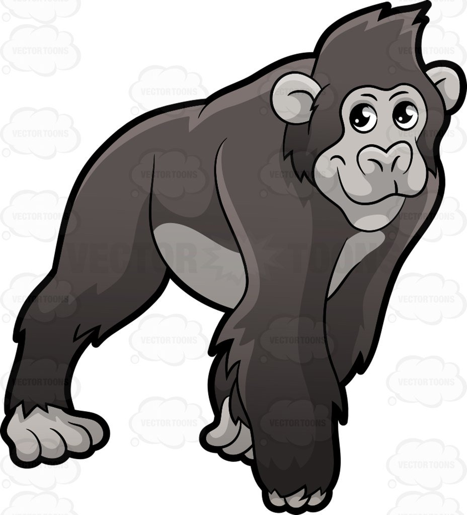 A Gorilla on all fours