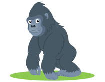 ground dwelling gorilla primate clipart. Size: 48 Kb