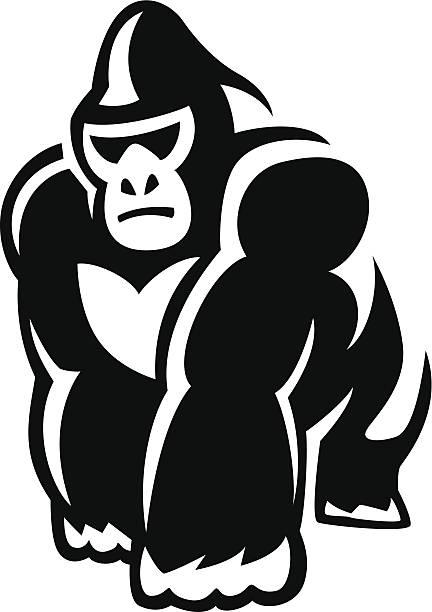walking gorilla vector art illustration