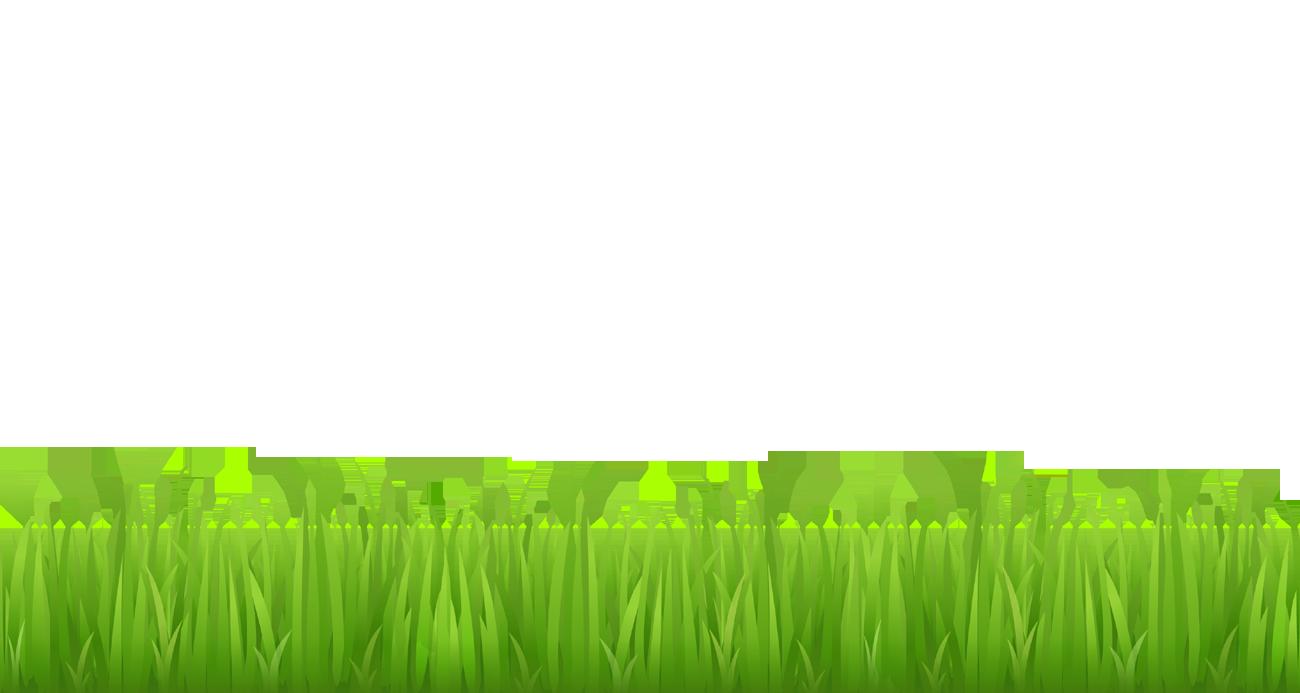 Grass clip art - Grass clipart
