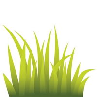 Grass clipart clipart cliparts for you