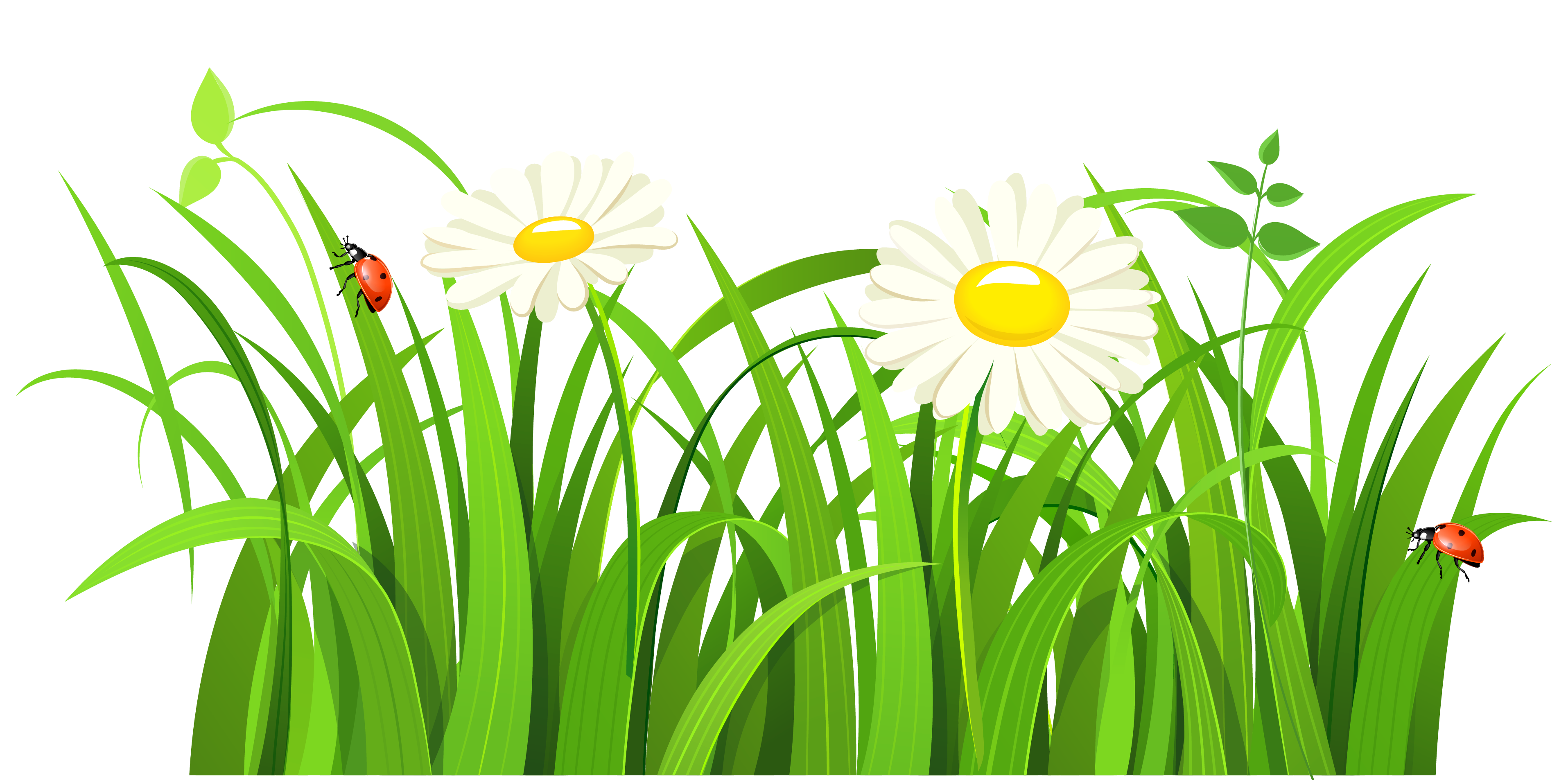 Grass clipart clipartcow