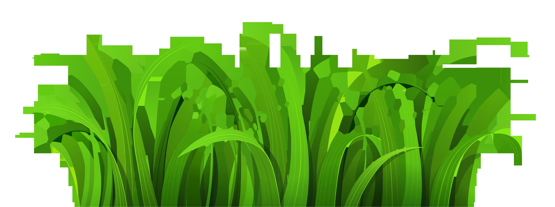 Grass Clipart #2200