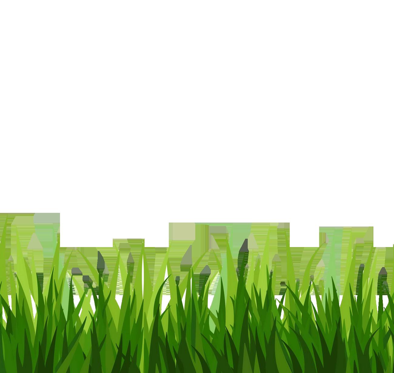 Grass clipart image green