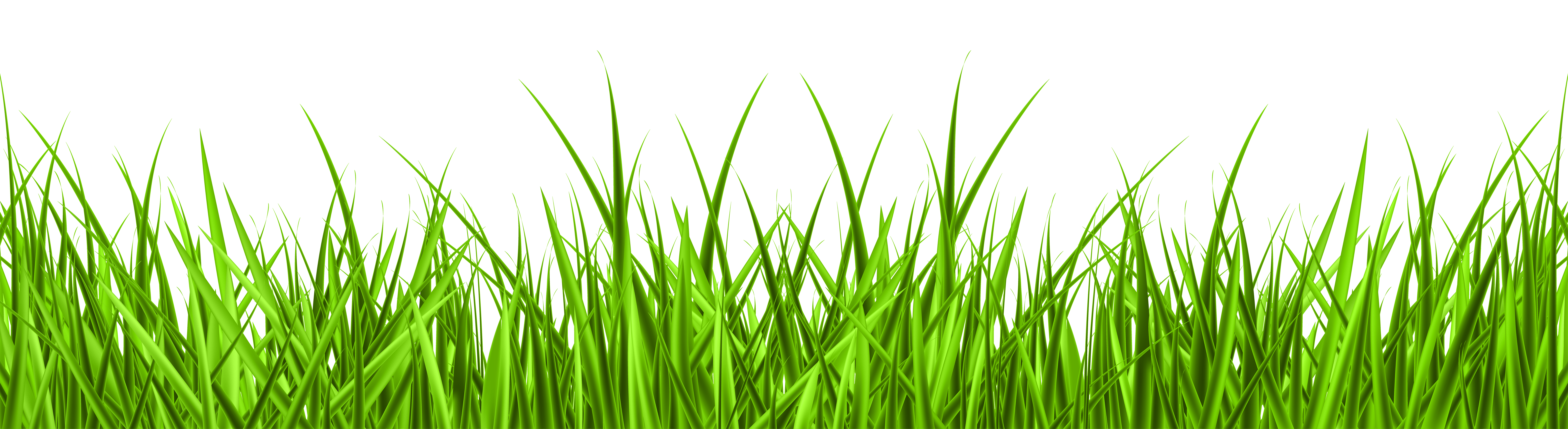lawn grass clipart