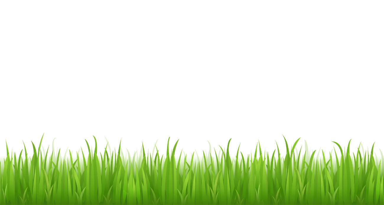 Grass clipart picture for bottom design