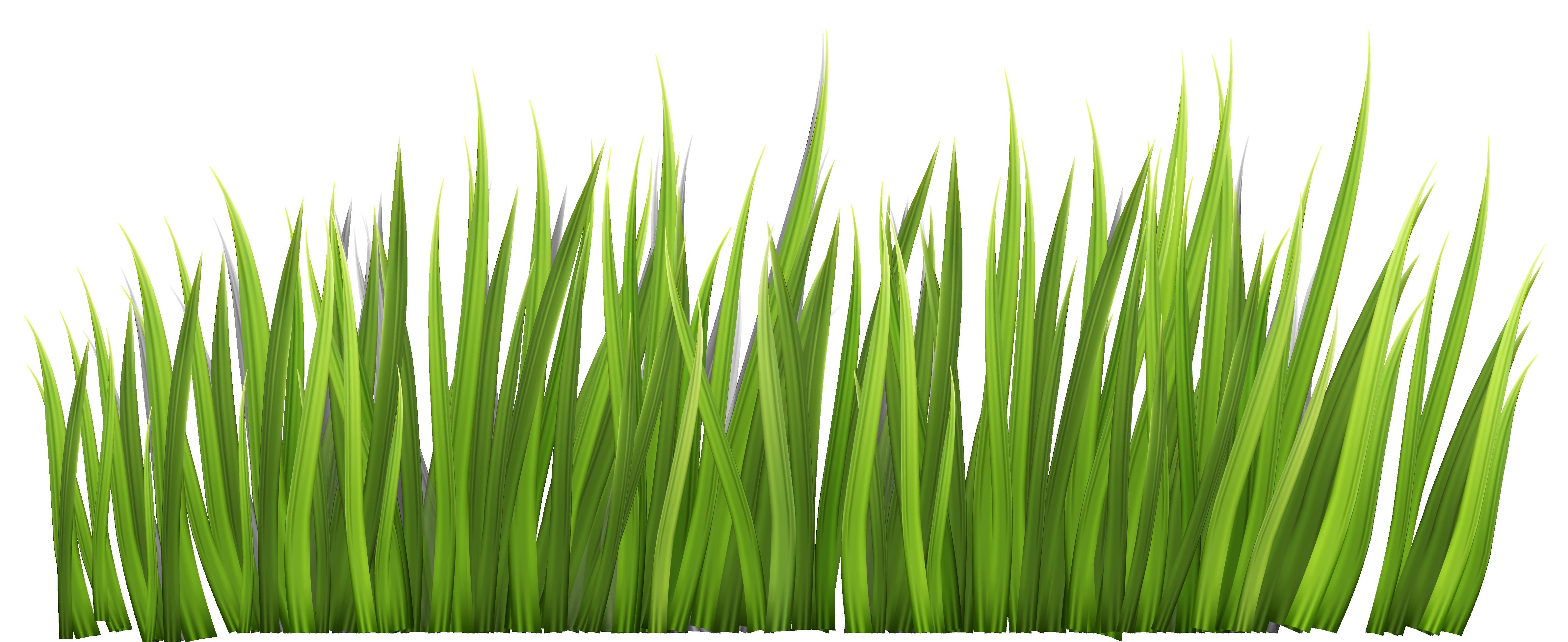 Safari Grass Clipart #1