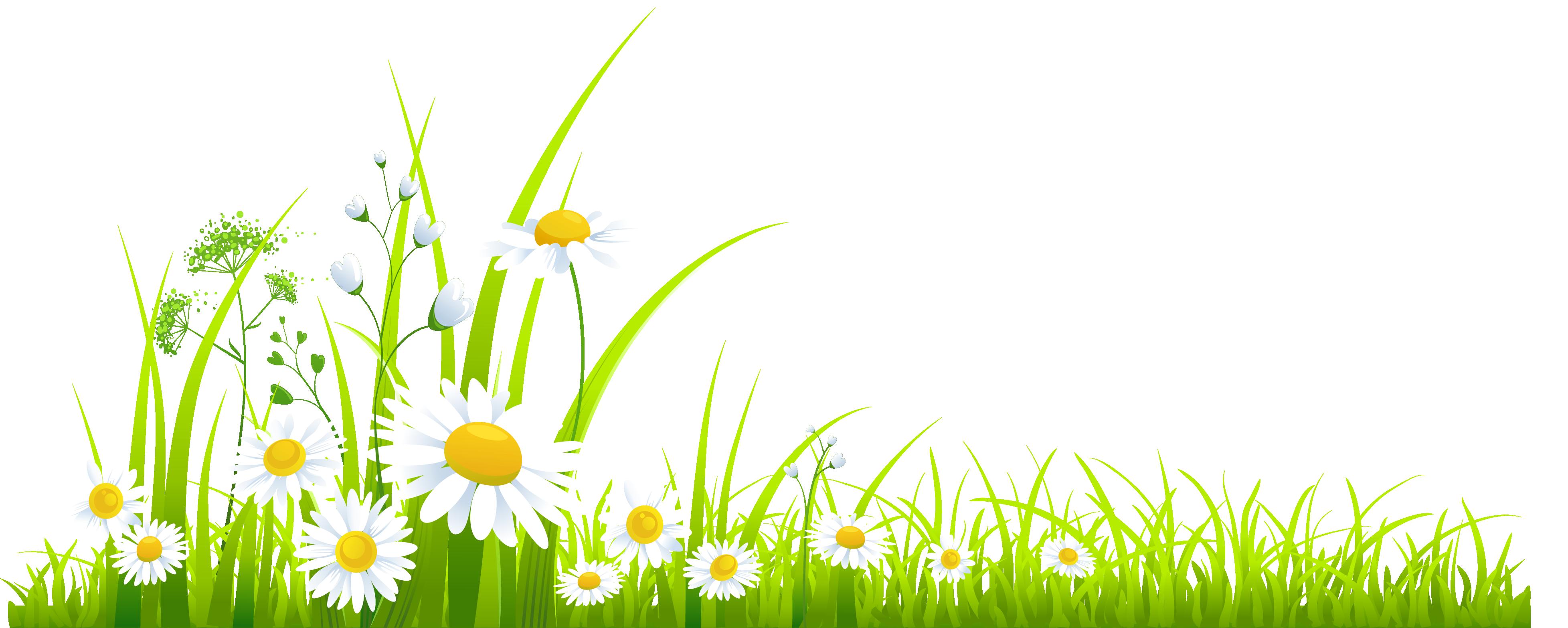 Spring Grass Clipart #1