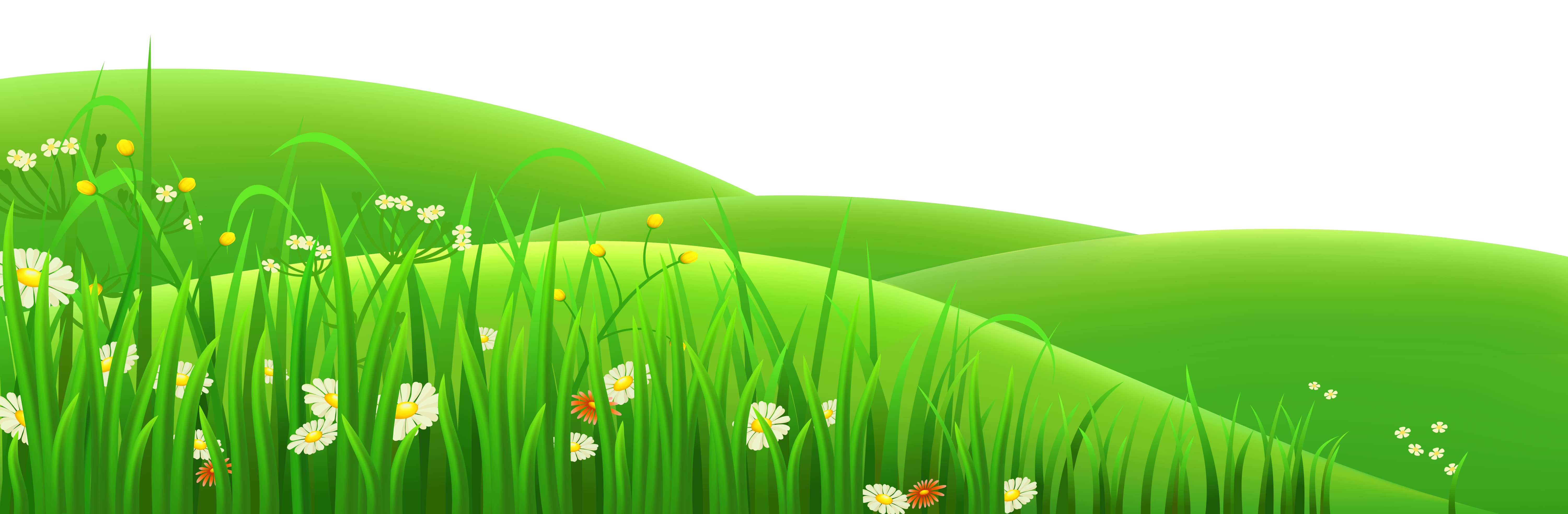 Transparent flowers and grass clipart