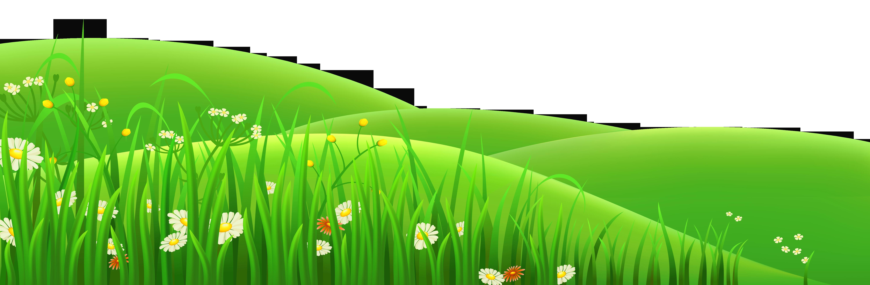 Transparent flowers and grass - Grass Clipart
