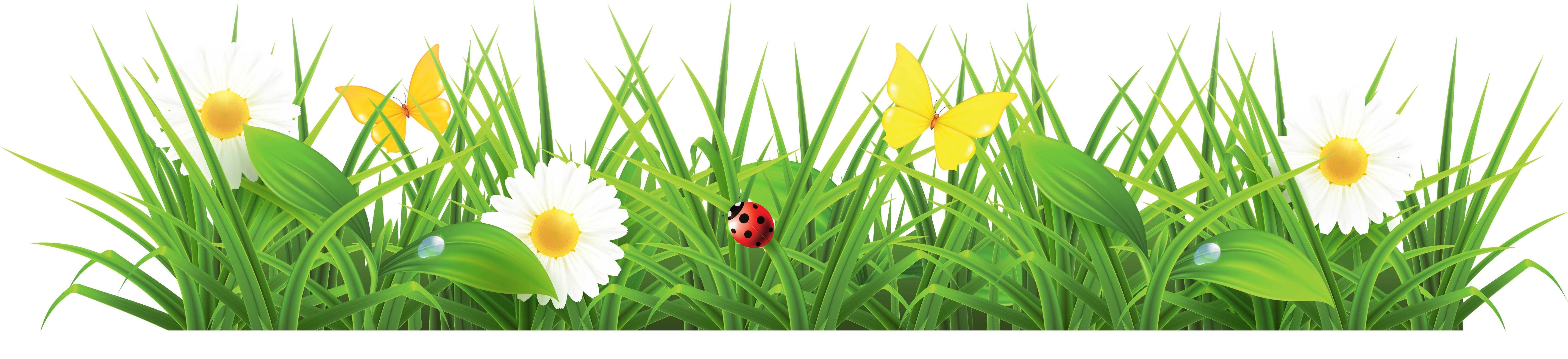Grass ground with flowers clipart picture 0