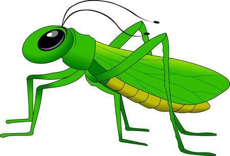 cheerful, small, green grasshopper