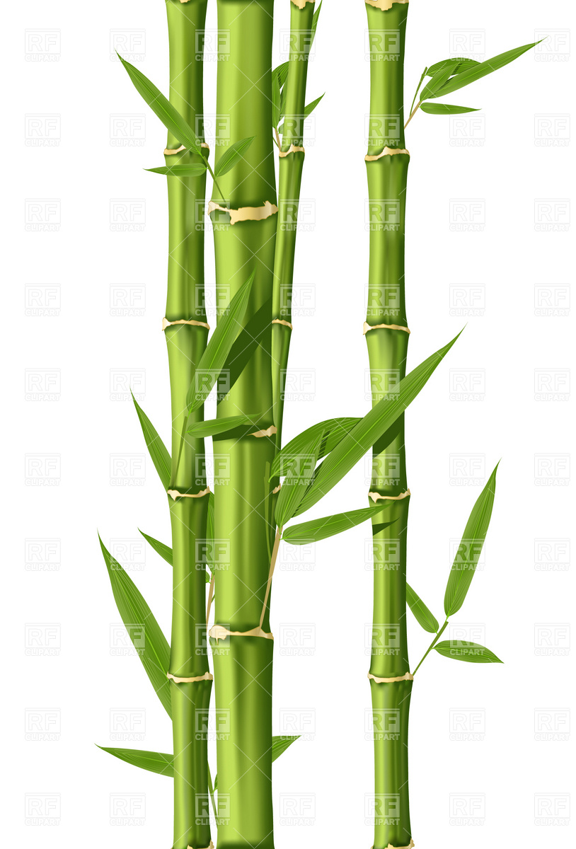 Green Bamboo Stems 4743 Plants And Animals Download Royalty Free