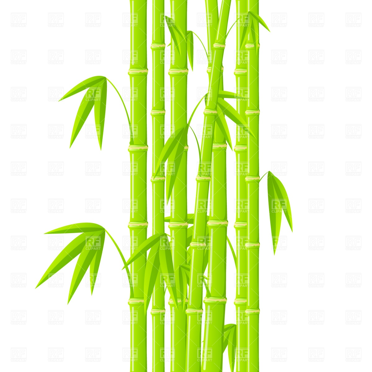 Green Bamboo Stems With Leaves Download Royalty Free Vector Clipart