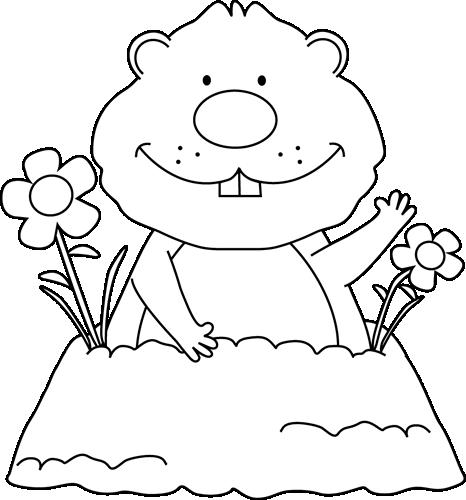 Black and White Spring Groundhog