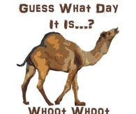 Guess What Day It Is Whoot Whoot