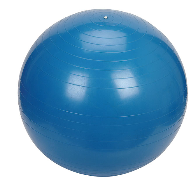 Exercise Ball - 55cm