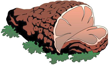 Baked Ham Clipart #1 - Ham Clipart