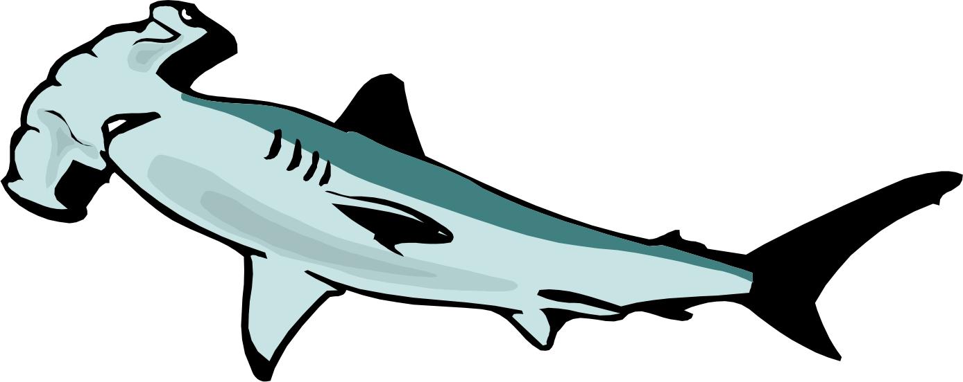 Hammerhead Shark Clipart .
