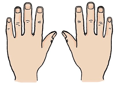 Hand Clipart Cliparts For You 2