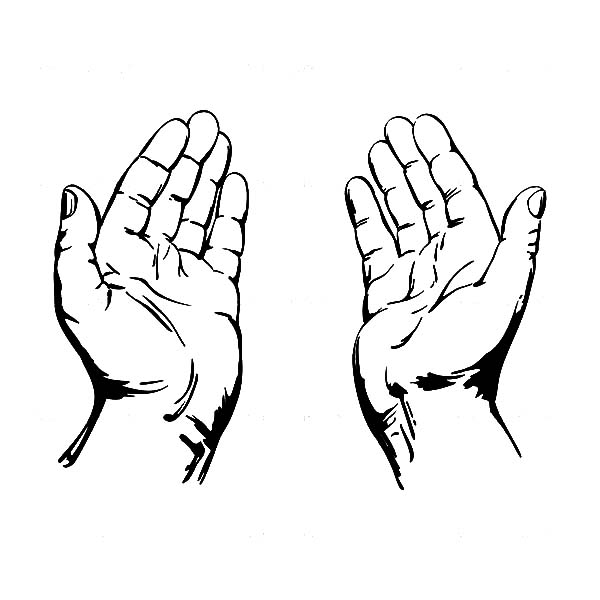 Hands Clip Art to Download - dbclipart clipartall.com; Open ...