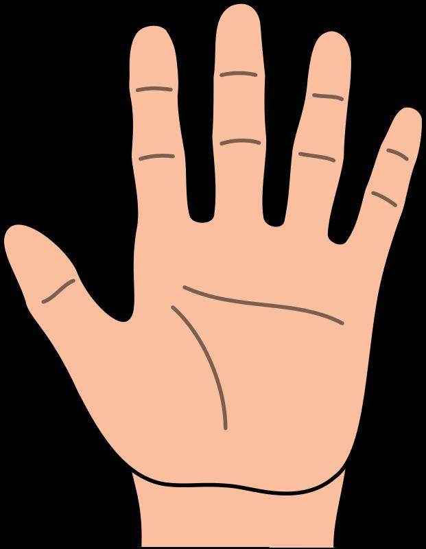 Hands hand outline clipart kid