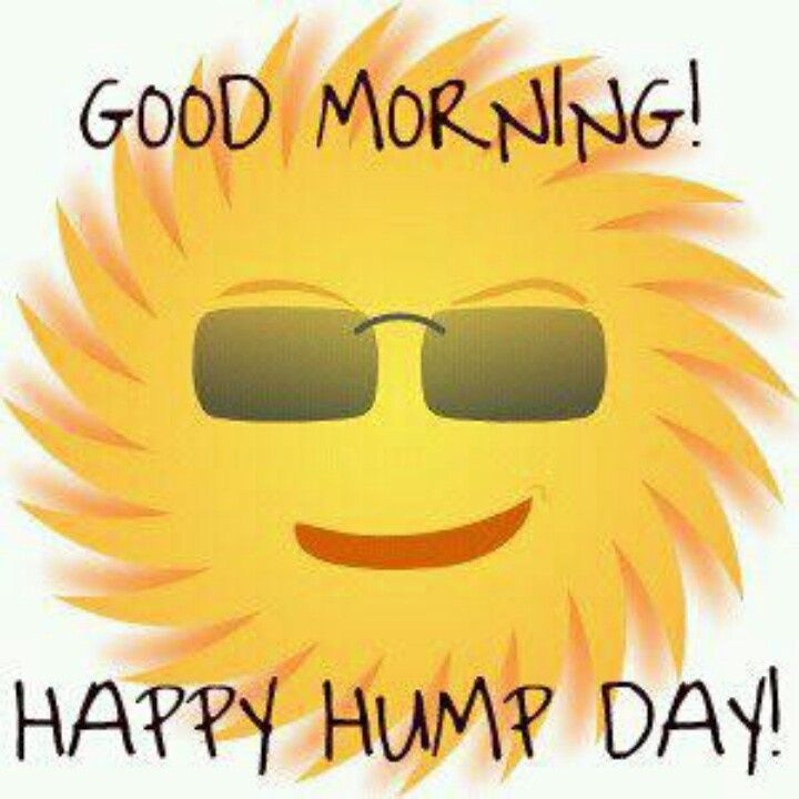 ... Happy Hump Day Cliparts - Cliparts and Others Art Inspiration ...