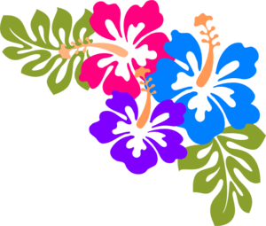 Hawaiian Flower Clip Art Borders Free Clipart Images 2