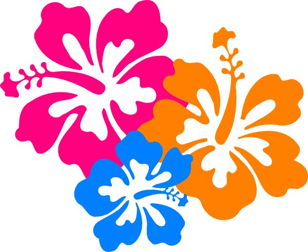 Hawaiian Flower Clip Art Borders Free Clipart Images 4